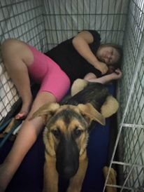 P.T.S.D. and Service Dogs